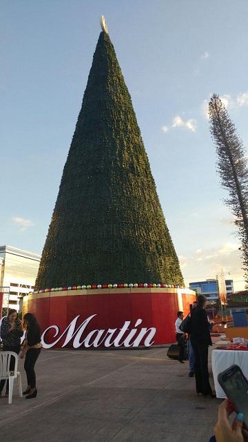 Árbol San Martín