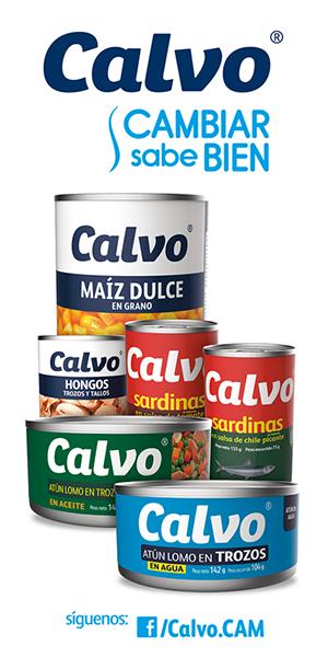 CALVO 300*600