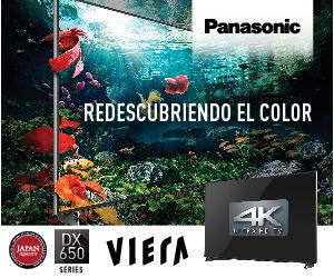 Panasonic 300×250