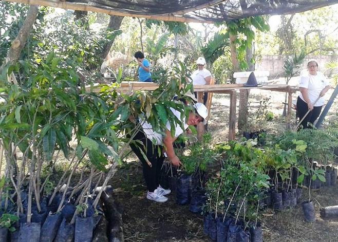 Mejicanos reinaugur vivero municipal el metropolitano for Vivero municipal