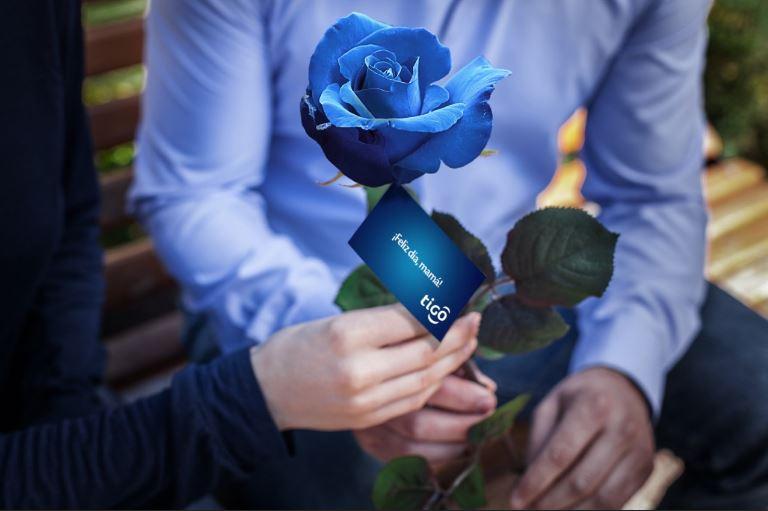 Tigo Celebró Con Rosas Azules A Mamá El Metropolitano Digital
